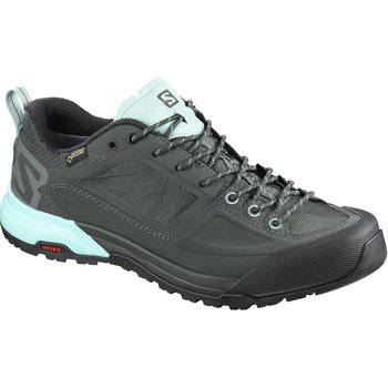 Salomon X Alp SPRY GTX W, Balsam Gr/Urban, EUR 38 2/3 (UK 5.5)