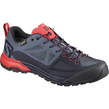 Salomon X Alp SPRY GTX W, Gy/Crown Blue/P, EUR 38 2/3 (UK 5.5)